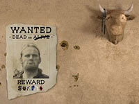 Outlaw's Escape
