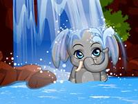 Pet Stars - Funny Elephant