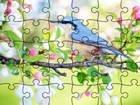 Jigsaw Puzzle Spring