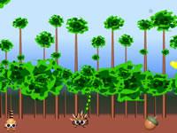 Arcade Animals : Flying Squirrel