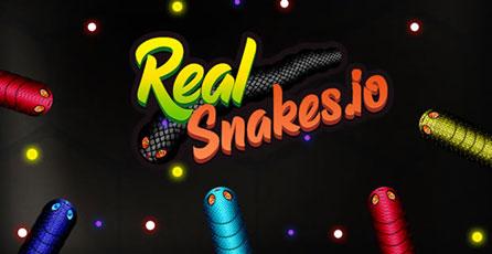 RealSnakes.io